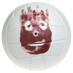 Picture of the wilson castaway volleyball.